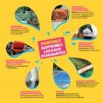 7conseils-moustiques