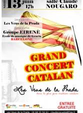 affiche 2015 grand concert fin d'année