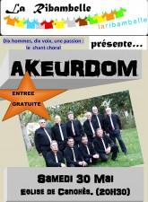 affiche AKEURDOM