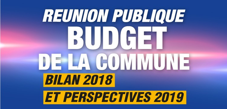 budget-article