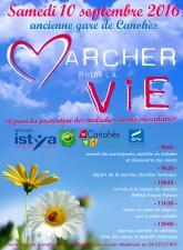 fly-marche-pour-la-vie-1