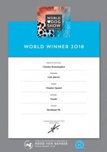 titre-championne-du-monde--2018.